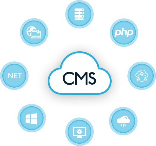 cms development services